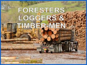Loggers & Timber Operator