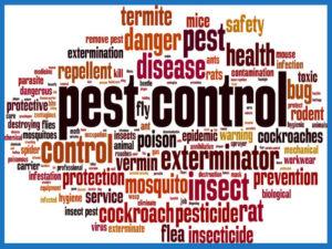 Pest Control Contractors